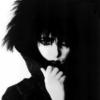 Siouxsie & The Banshees Family Tree