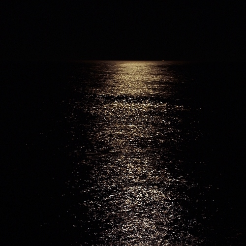 the road is a ribbon of moonlight