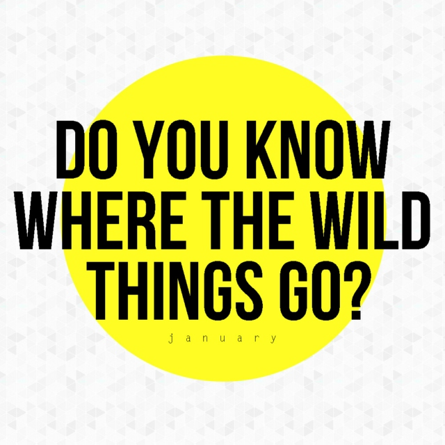do you know where the wild things go?