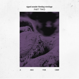 Ripped Asunder Bleeding Wreckage - Part Two