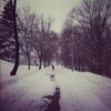 Canadian tunes for winter blues