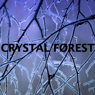 Crystal Forest #1