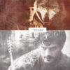 The Forgotten Pup of Winterfell