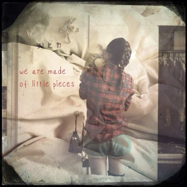 we are made of little pieces