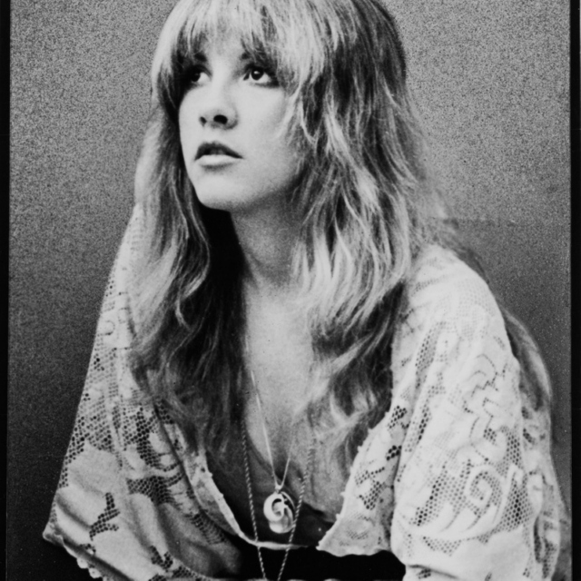 All Stevie Nicks