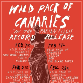 Wild Pack of Canaries - The Mix