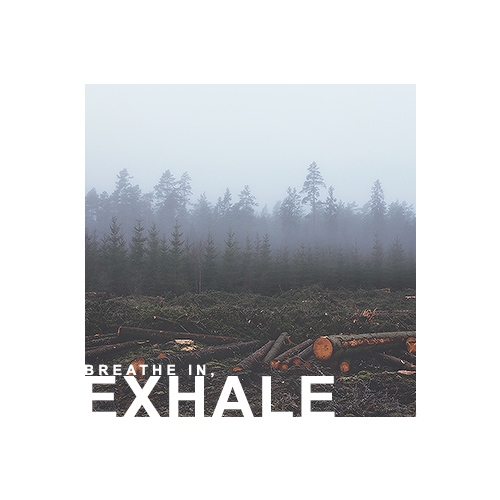 breathe in, exhale
