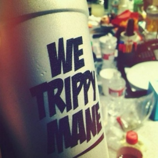 Trippy nation