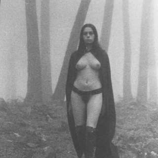 Black Metal is the Forest Calling