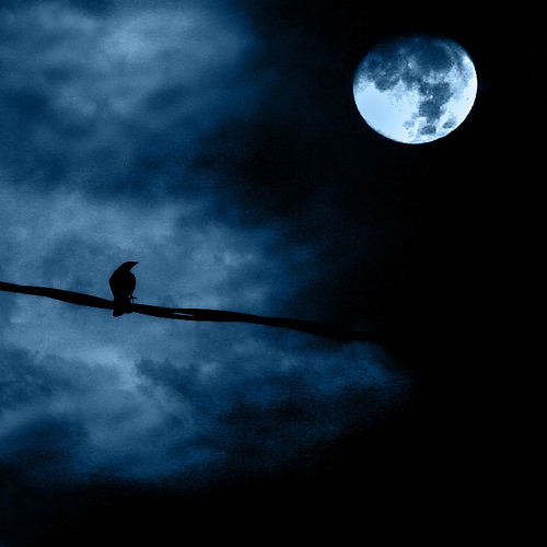 To The Peaceful Moon