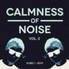 Calmness of Noise | vol. 2