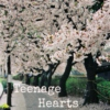 Teenage Hearts