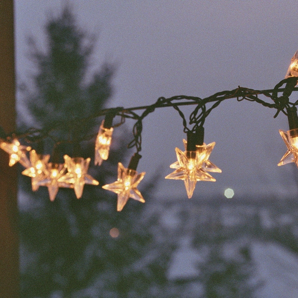 Hang Your Holiday Rainbow Lights In The Garden