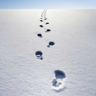 Covering our tracks