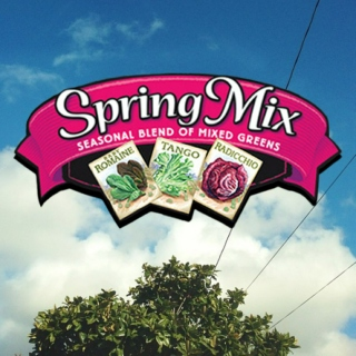Spring Mix Vol. II