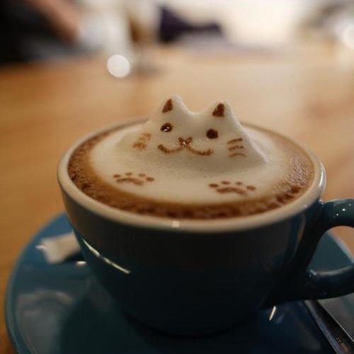 Imágenes De Good Morning I Hope You Are Feeling Better