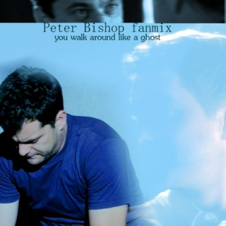 you walk around like a ghost - Peter Bishop fanmix