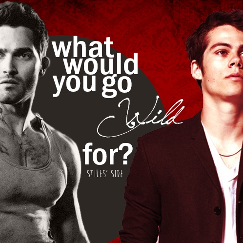 What Would You Go Wild For - Stiles Side