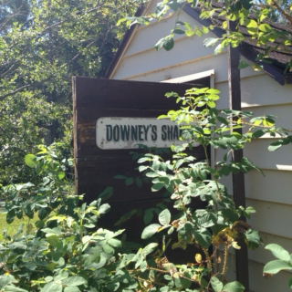 Day Trip to the Downey Shanty