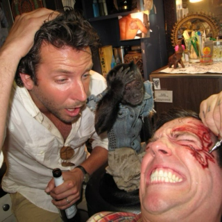 Monkey's Night out