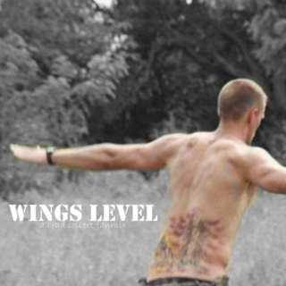 wings level.