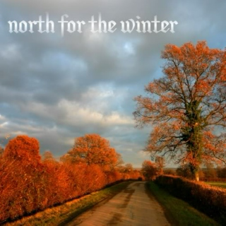 North For The Winter