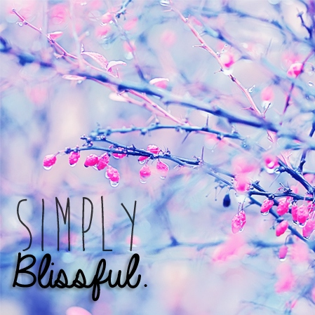 Simply Blissful