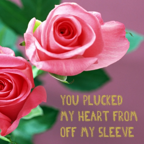 you plucked my heart from off my sleeve