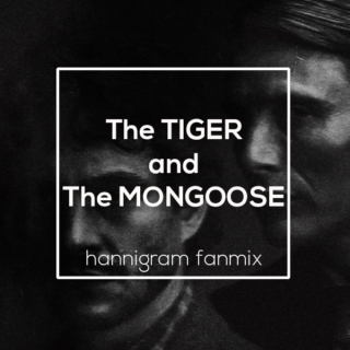 The Tiger and The Mongoose