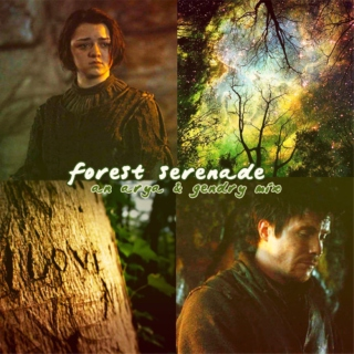forest serenade: an arya & gendry mix