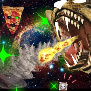 pizza cats in space (real fucking high on drugs)