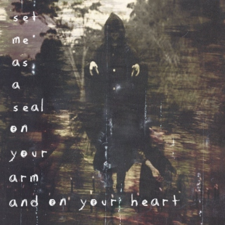 set me as a seal on your arm...