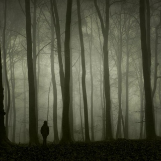 Man in the Wood