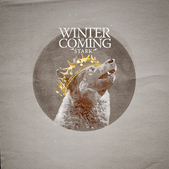 house Stark of winterhell;