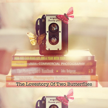 The Lovestory of two Butterflies - CD1 Blooming