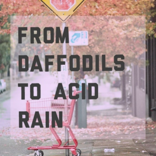 From daffodils to acid rain