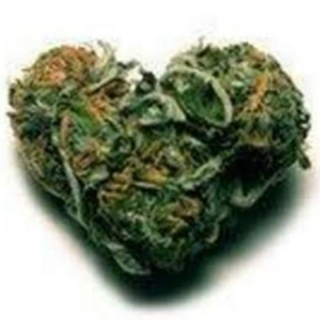 Weed Love- Ultimate weed songs!!!