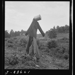 Do You Still Like Scarecrows?