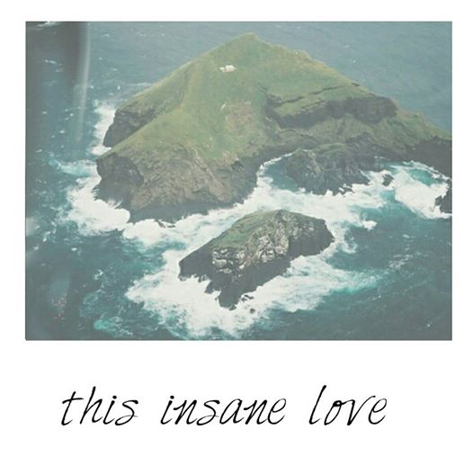 this insane love