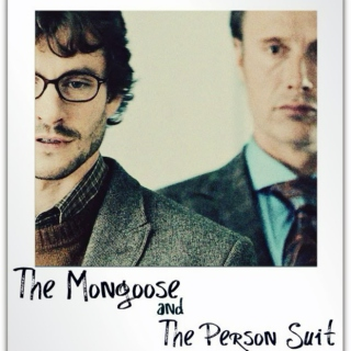 The Mongoose and the Person Suit