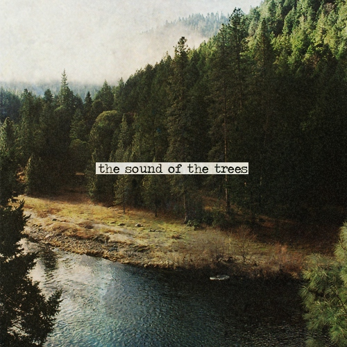 The sound of the trees