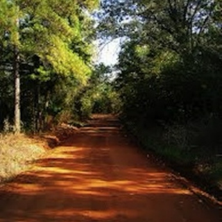 TEXAS RED DIRT
