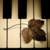 Meaning Beyond the Melody