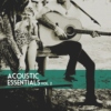 Acoustic Essentials Vol. 2