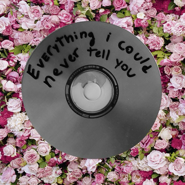 everything i could never tell you {h.s}