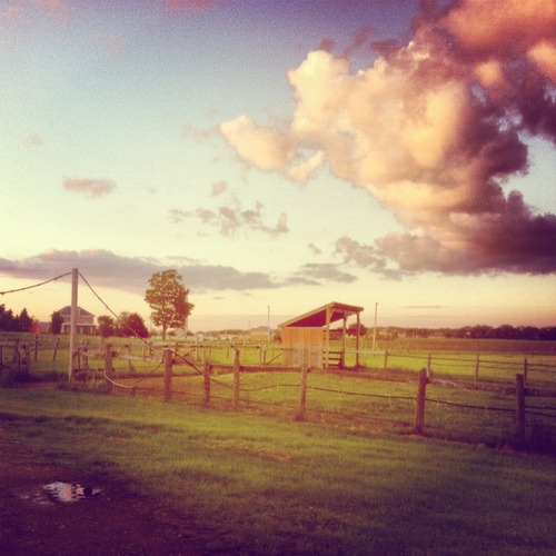 country & summer loving