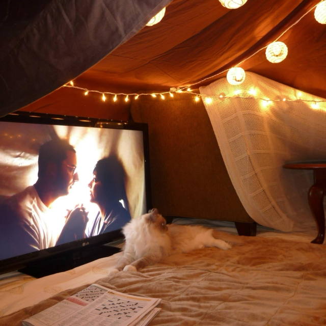Fort of blankets