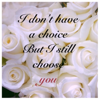I don't have a choice, but I still choose you