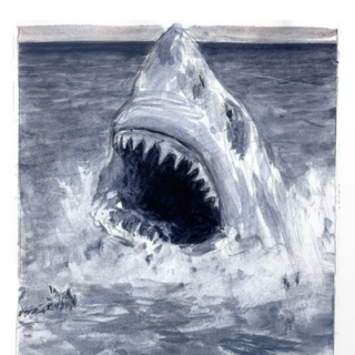 10 songs about SHARKS