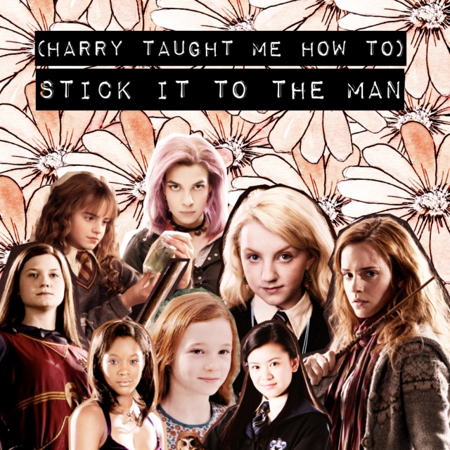 (harry taught me how to) stick it to the man